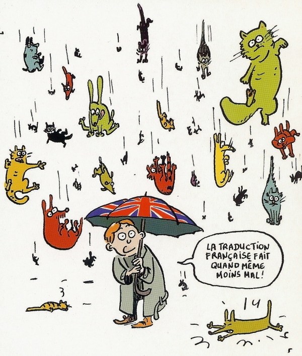 its-raining-cats-and-dogs-light.jpg